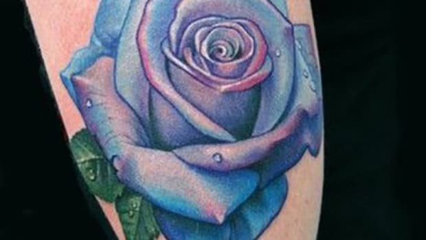 bluerose_feature