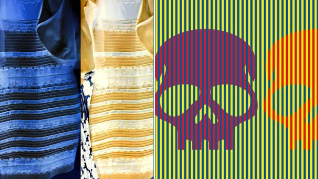 Munker-White illusion, munker white, optical illusions, blue and black dress controvery, blue or white dress, the dress controversy, Blue/Black White/Gold Dress Controversy, What Color Are These Skulls?, red skulls, the dress, skull tattoo ideas, purple and orange skull, David Novick, university of texas, color-completion effect, what is the color-completion effect