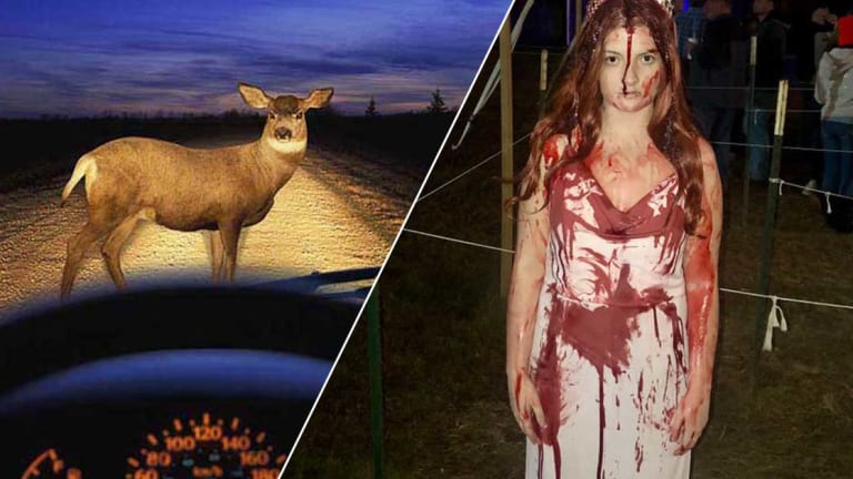 "College Student in Bloody ""Carrie"" Costume Risks Her Life To Promote School Musical"