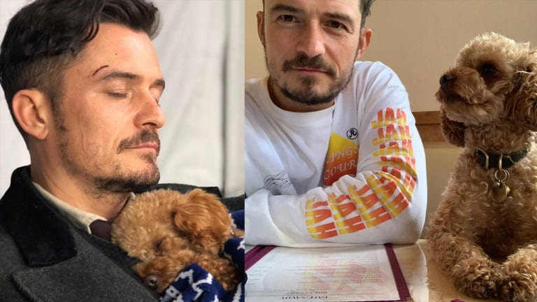 Orlando Bloom Got a Tattoo for His Late Dog