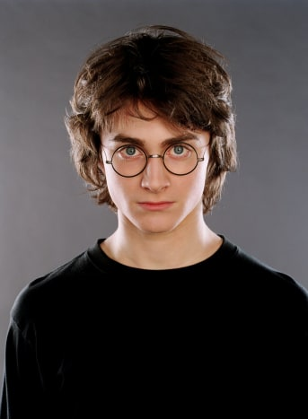 Harry's storyline may be varied throughout the series, however, the connect he has to his family comes up around every turn.