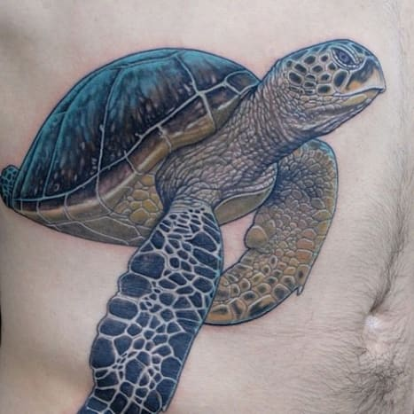 Amazing work on bringing this sea turtle to life.