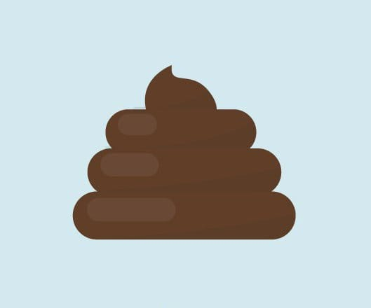 "Okay, as you may have expected, poop is normally brown. The main reason it is brown is the way bile reacts with fats in your body. If you are not familiar with bile, it is a fluid produced by your liver to digest fats. If you were to pluck a piece of poop from your body in its early stages it would be a yellowish-green color. However, as the pigments that give bile its color travel through your digestive system, they go through chemical changes and turn brown. Now all bets are off if you have diarrhea. I's hard to determine what color your poop will be when you have ""the runs"", because the food may travel so quickly through your body that it does not have time to process it correctly and turn brown."
