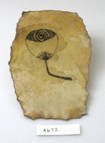 According to the Wellcome Library this piece of skin shows a fan tattooed.
