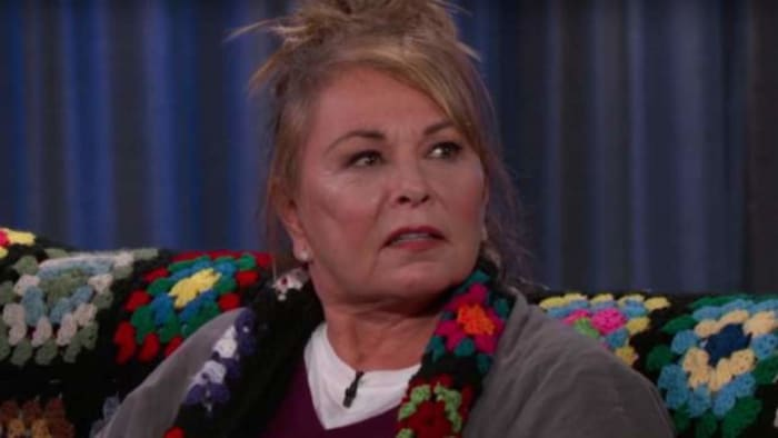 Following an extremely racist tweet, Roseanne Barr's hit sitcom was canceled and she was torn to shreds by the media.