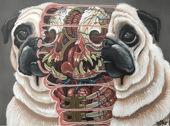 Photo via nychosAn illustration by @nychos