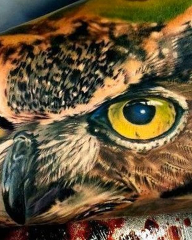 Photo Realistic Owl by Matt JordanPhoto Realistic Owl by Matt Jordan
