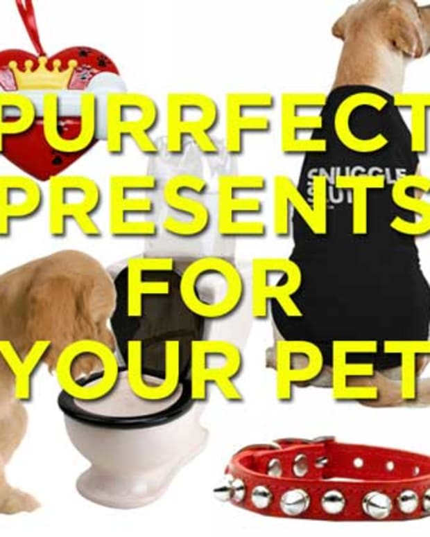 petgifts_feature
