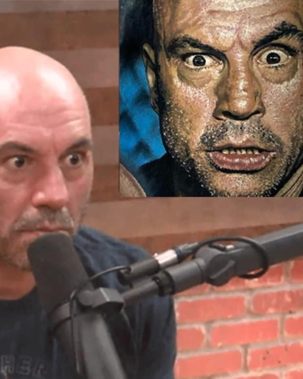 joe rogan portrait fb