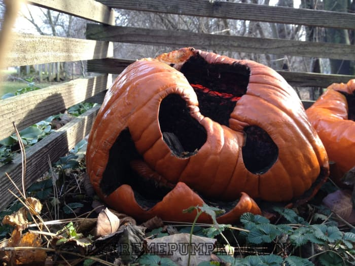 Mourn the End of Halloween with 27 Sad Pumpkins - Tattoo ...
