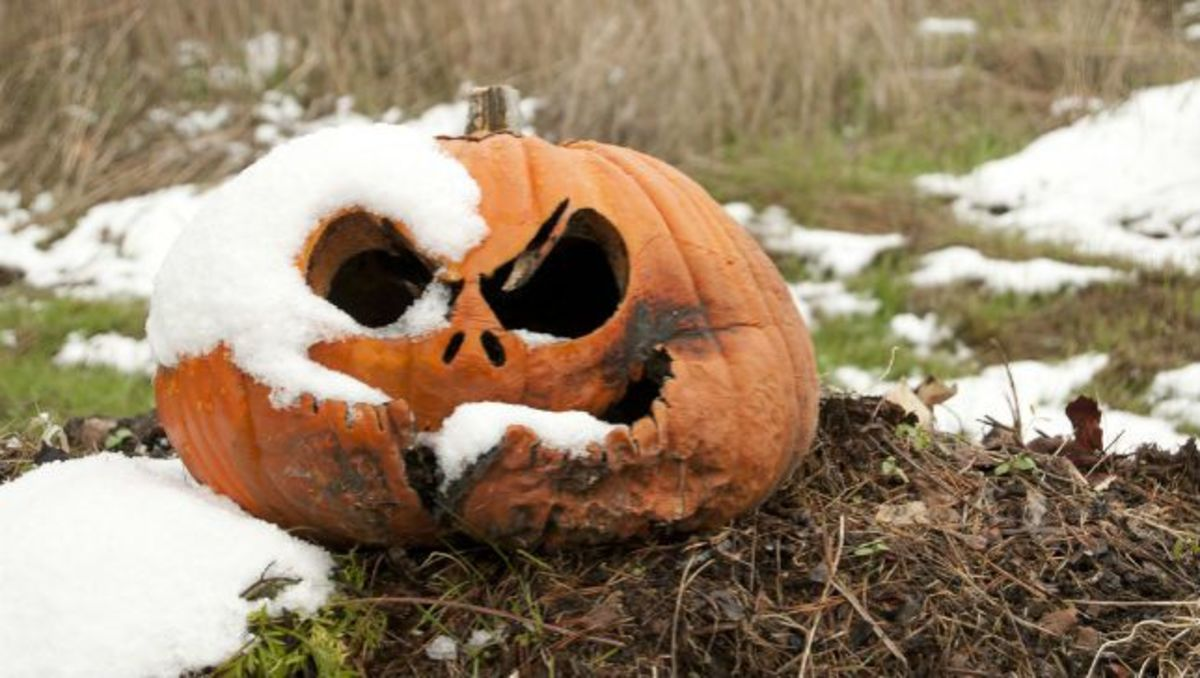 rotting-halloween-pumpkin.jpg.653x0_q80_crop-smart