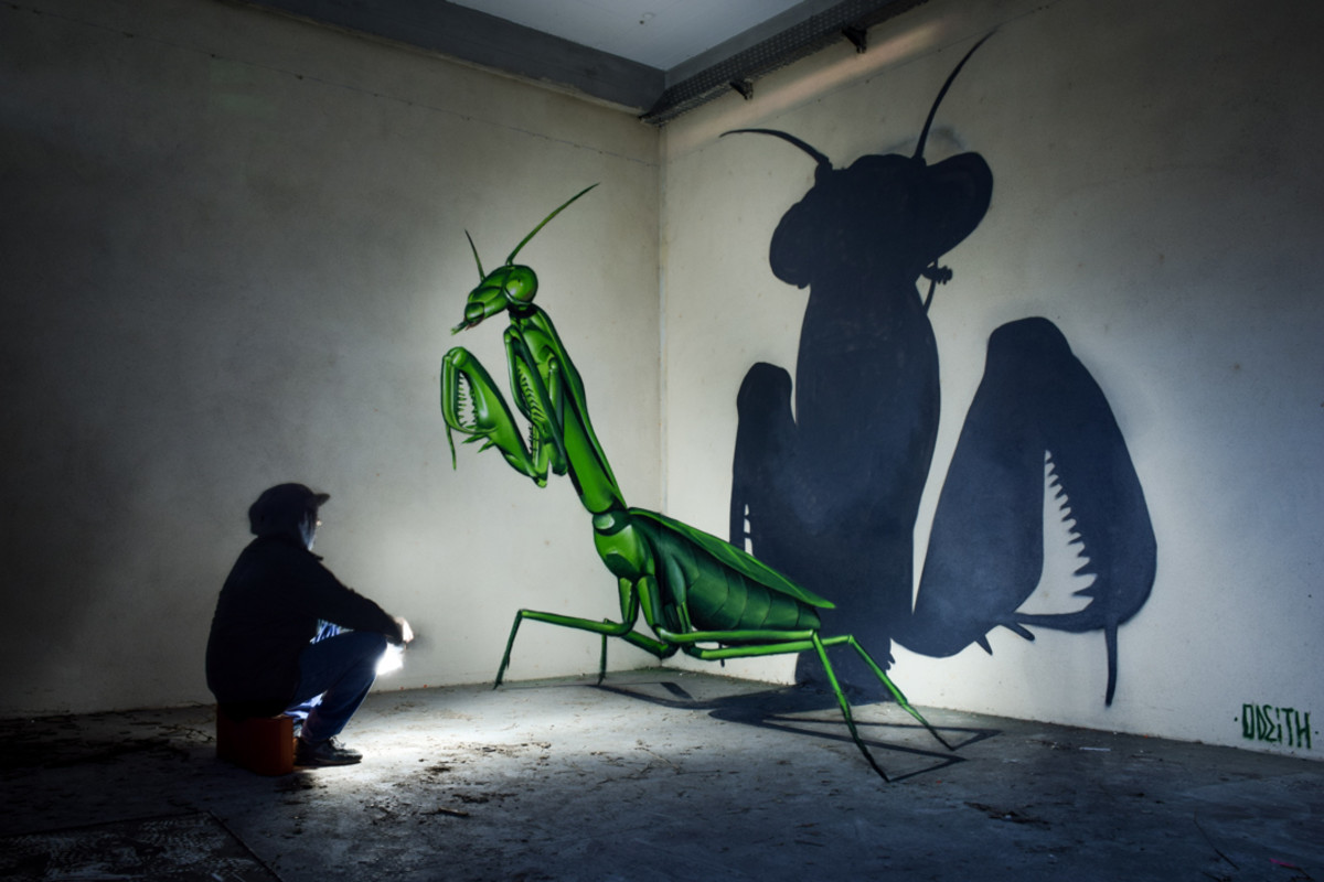 anamorphic praying mantis 2016