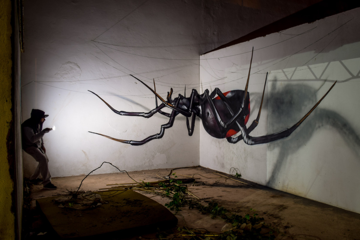 black widow anamorphic odeith 2016