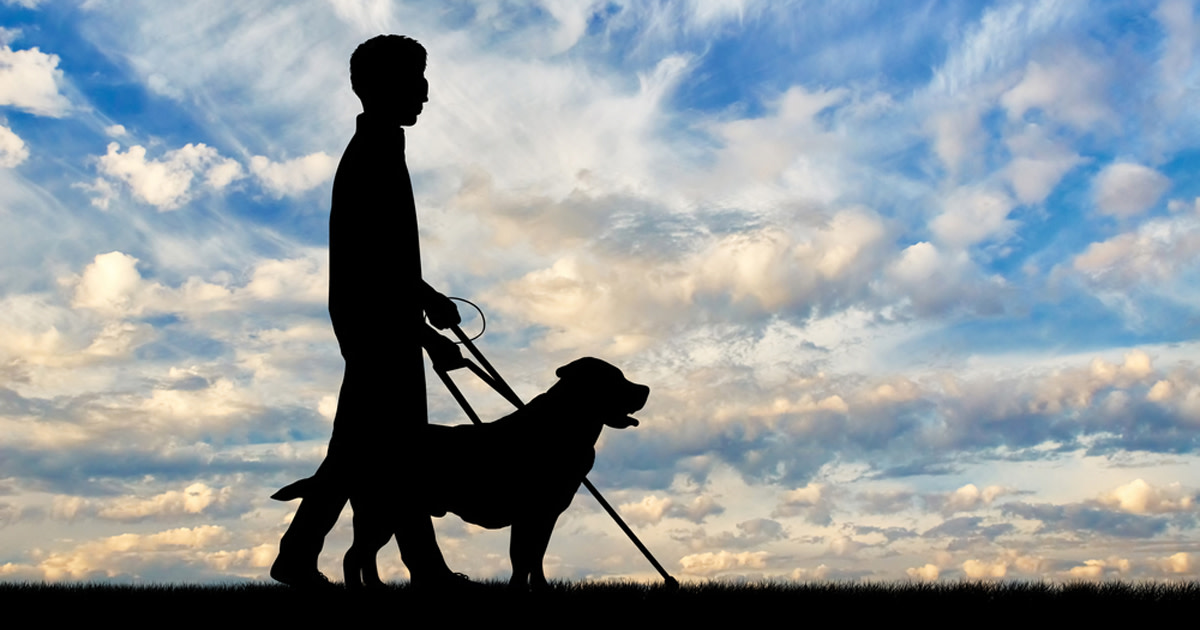 Photo Description: Boy walking with guide dog and cane against blue skies and clouds